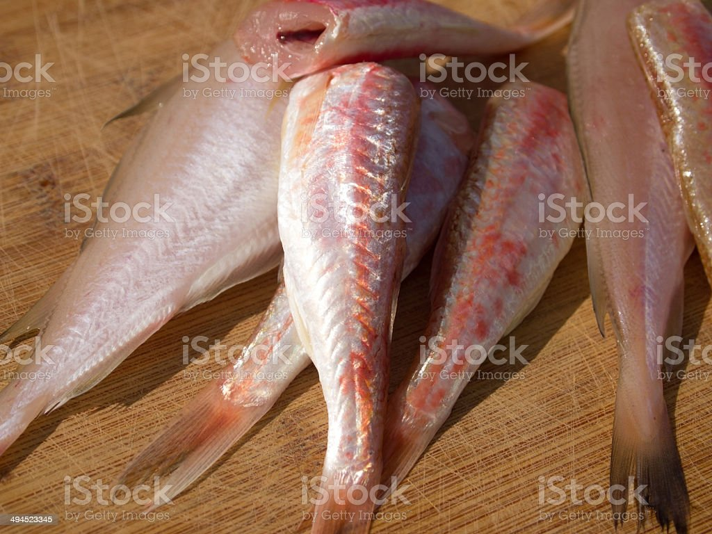 Hake and red mullet fish stock photo