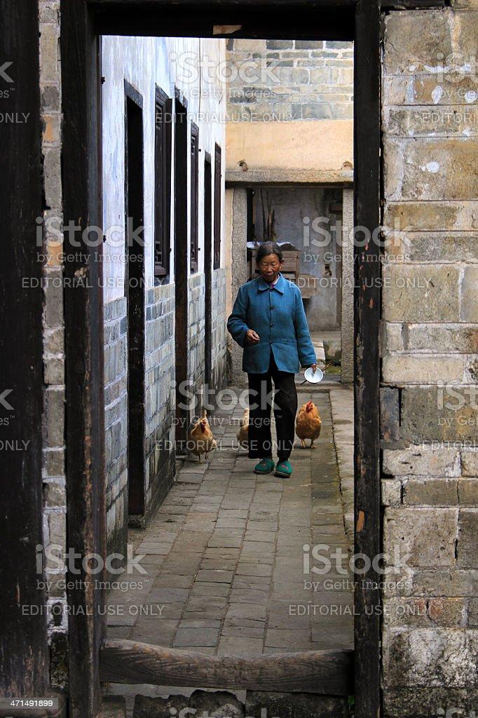 Hakka Woman and Chickens royalty-free stock photo