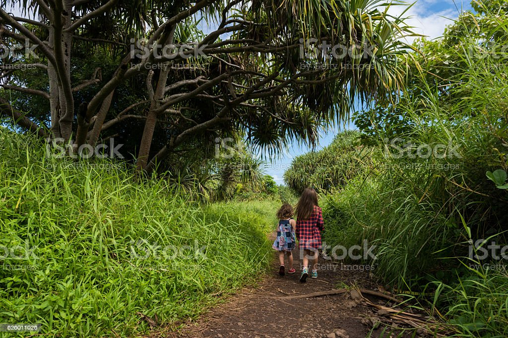 Haleakala National Park, Hana, Maui stock photo