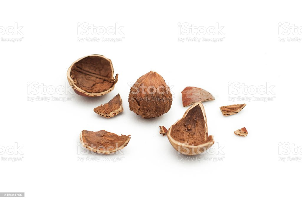 haleznut and nutshell stock photo