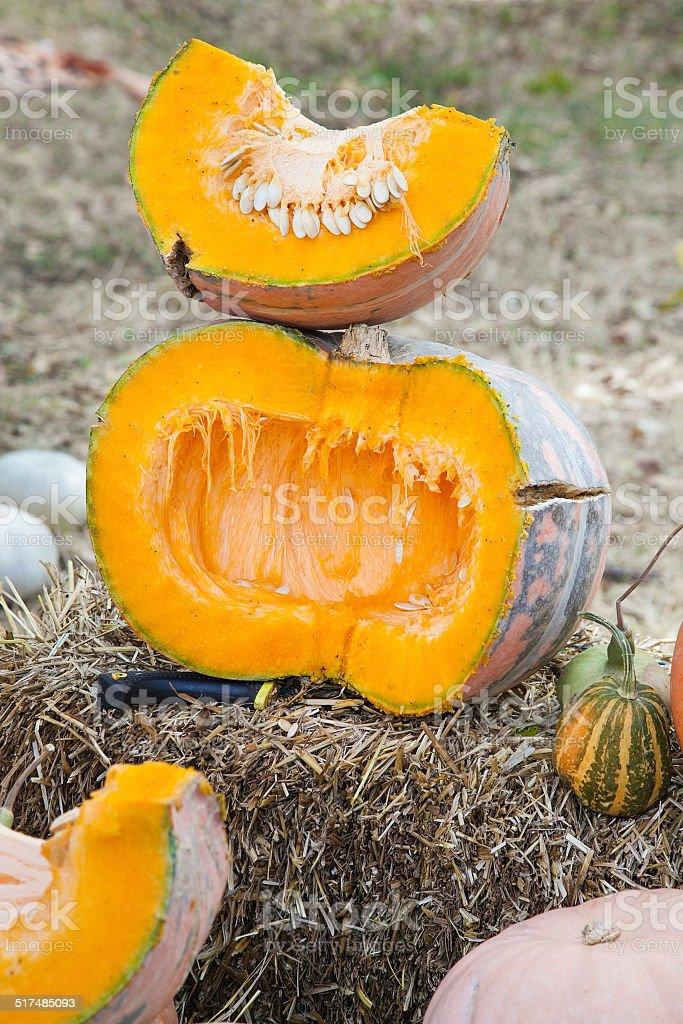 Half cut pumpkin stock photo