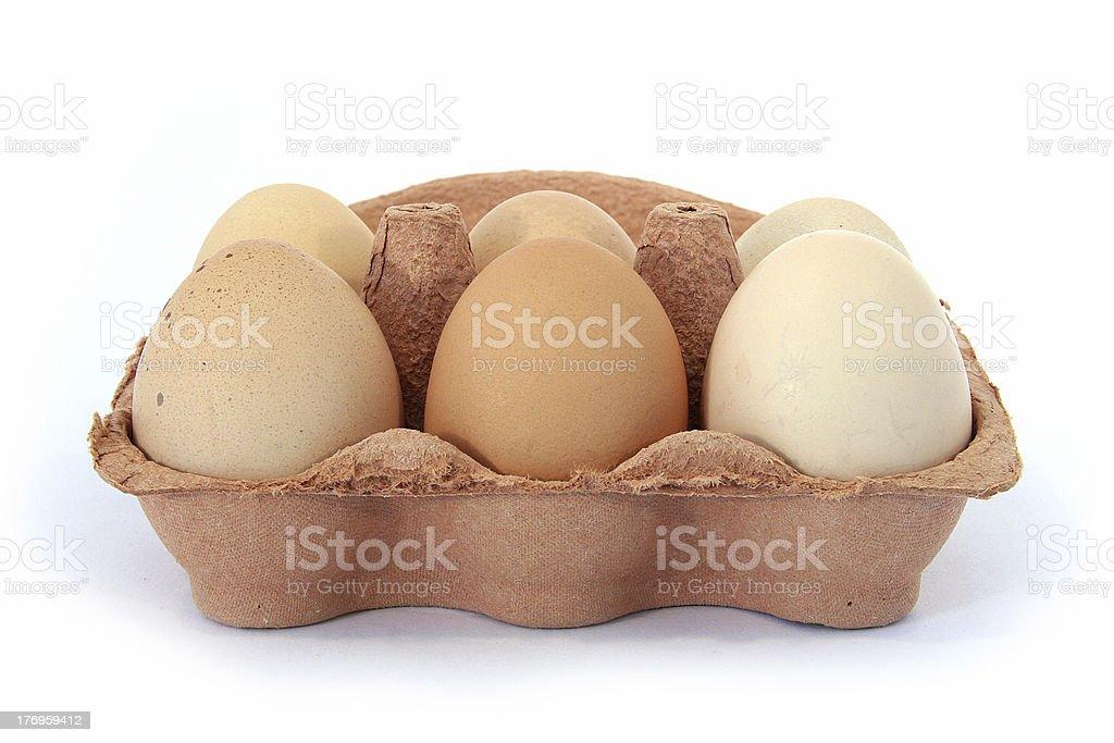 Half Dozen Free Range Hens Eggs Box Front View royalty-free stock photo