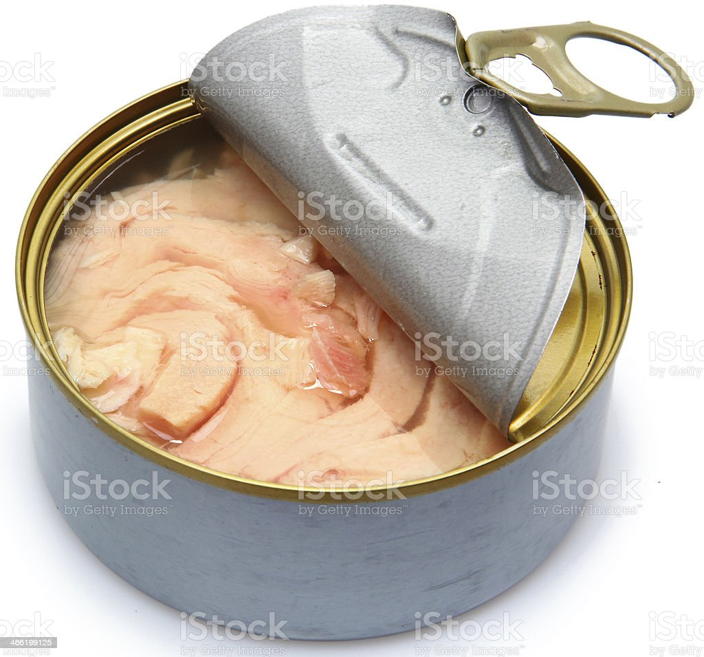 Half Opened Can of White Albacore Tuna stock photo