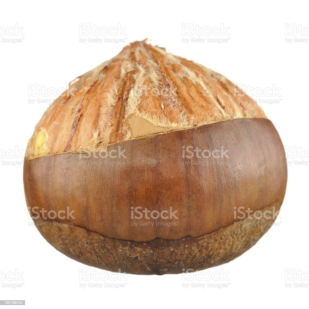 Half Peeled Chestnut Isolated on White Background royalty-free stock photo