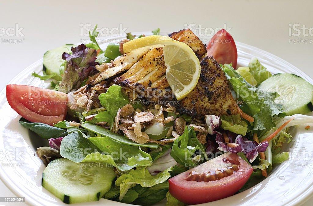 Halibut Salad royalty-free stock photo