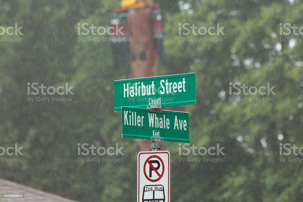 Halibut Street and Killer Whale Ave, Alaskan Street Signs stock photo