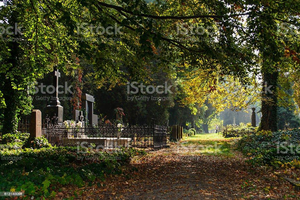 Halloween - All Saints stock photo