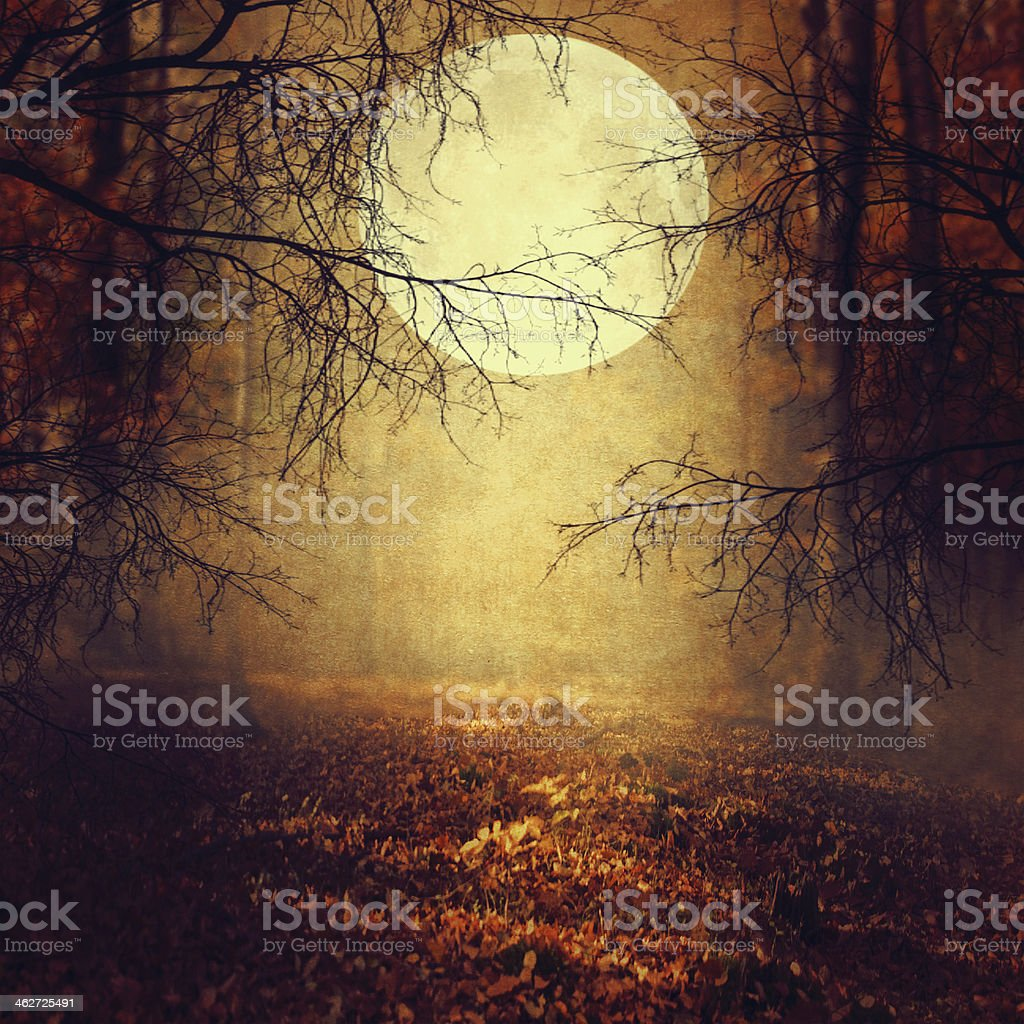 Halloween background with moon stock photo