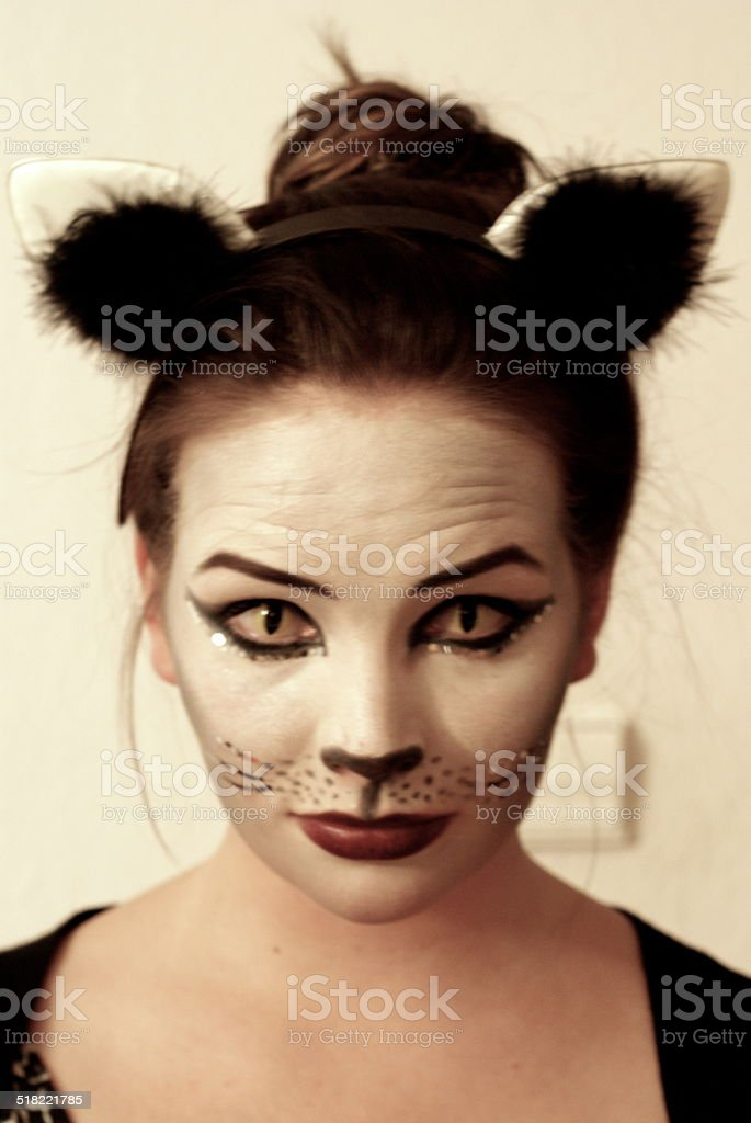 Halloween Cat stock photo