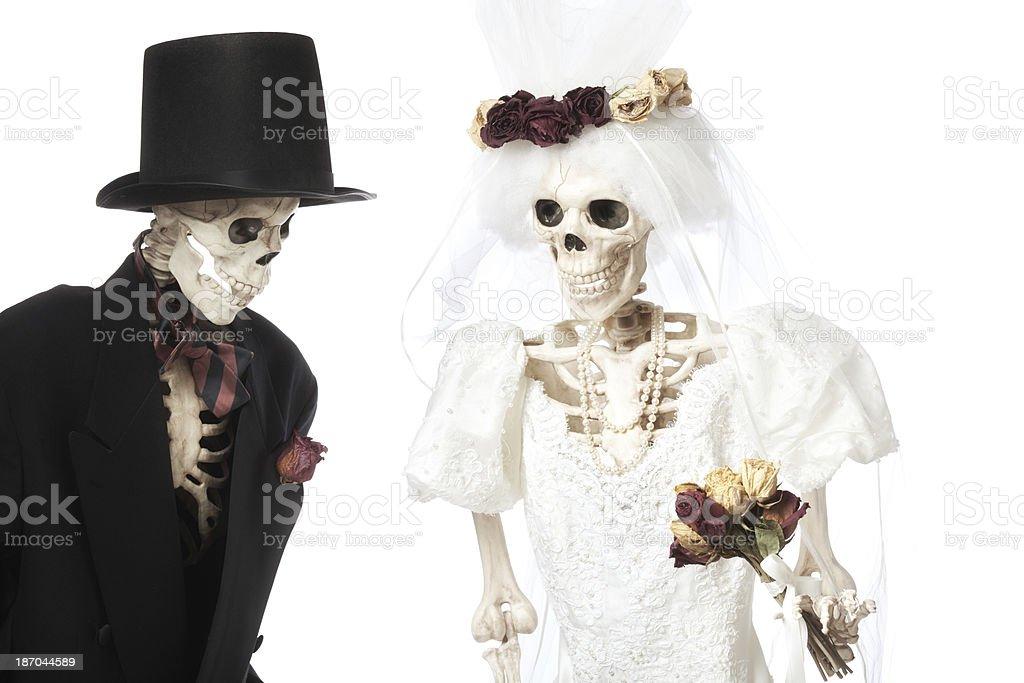 Halloween Day of the Dead Skeleton  Portrait on White Background stock photo