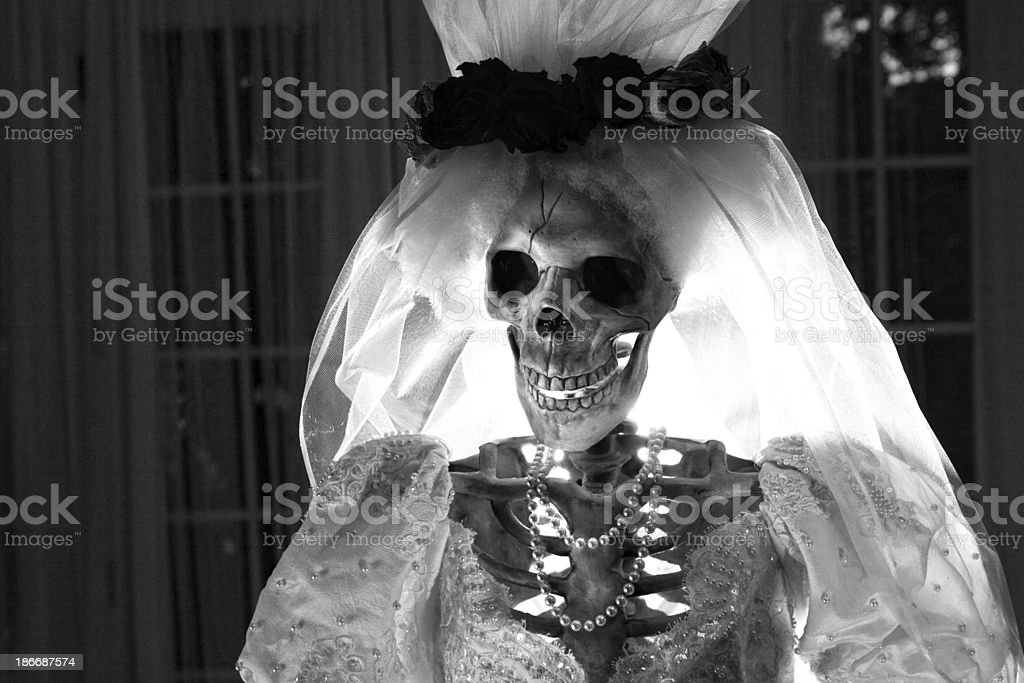 Halloween Day of the Dead Wedding Skeleton Bride Horizontal stock photo