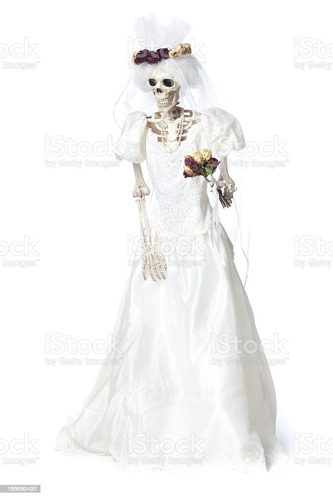 Halloween Day of the Dead Wedding Skeleton Bride on White stock photo