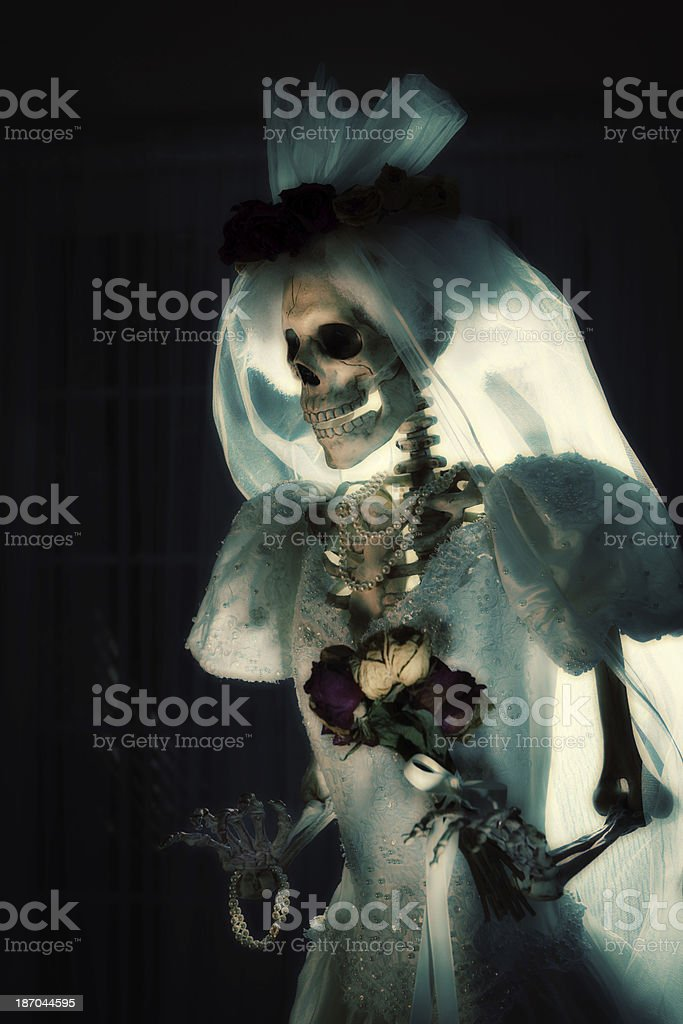 Halloween Day of the Dead Wedding Skeleton Bride Portrait Vertical stock photo