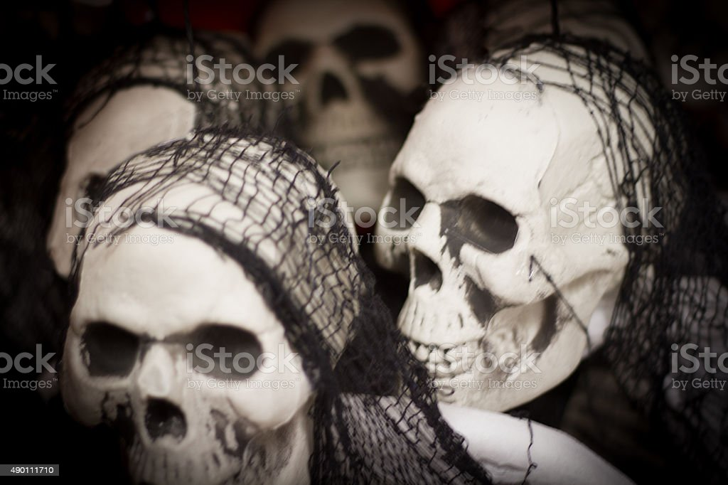 Halloween Display: Spooky Skulls and Cobwebs (Close-Up) stock photo