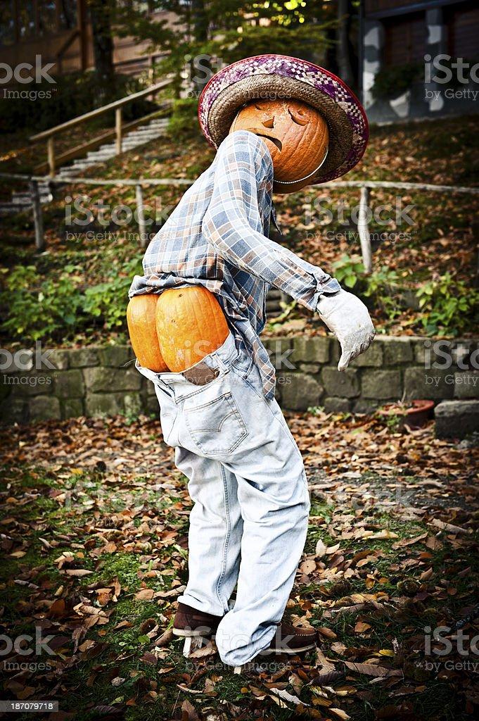 Halloween Funny Man Made of Pumpkins royalty-free stock photo