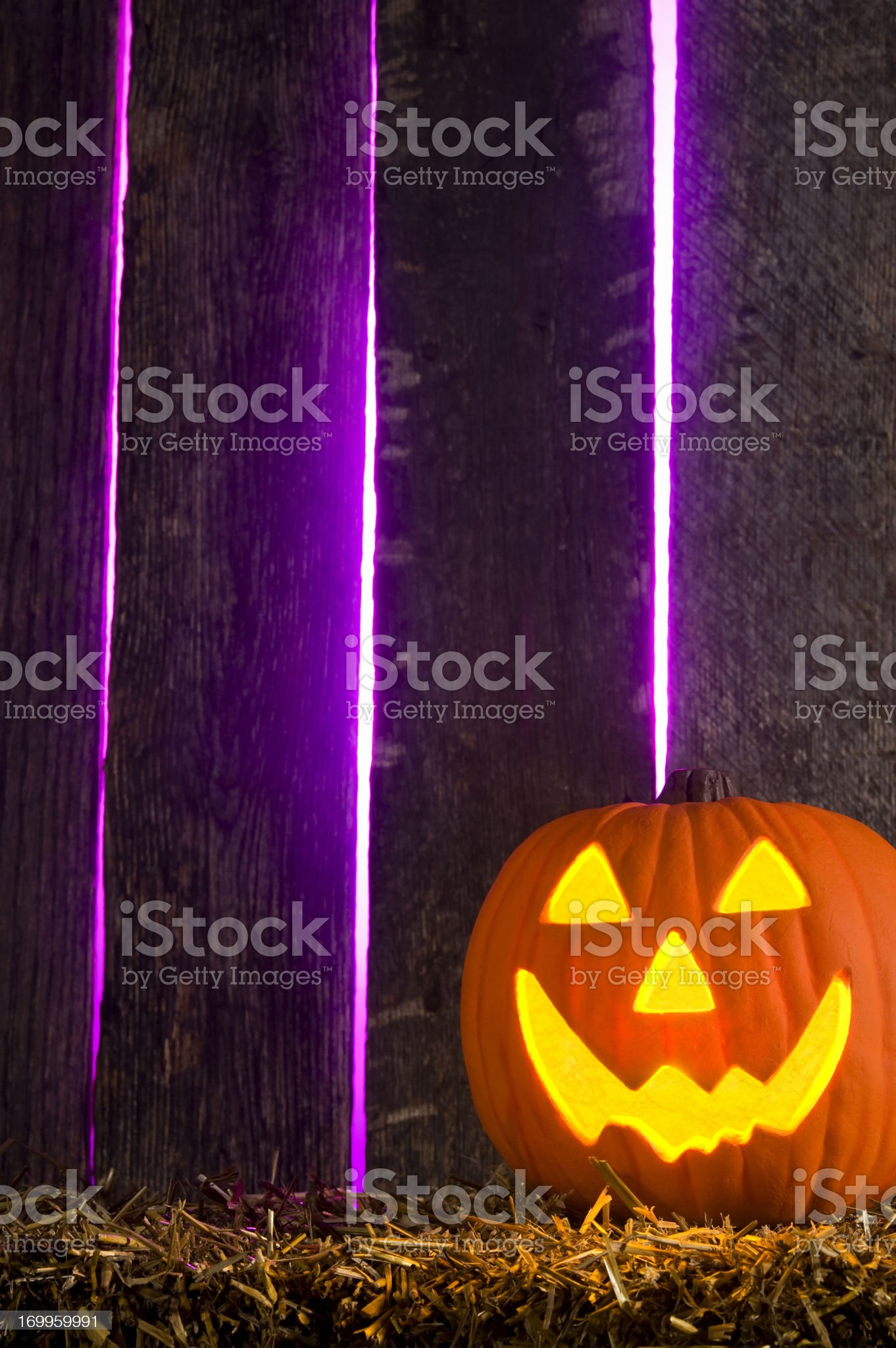Halloween, Jack O' Lantern in front of spooky barn royalty-free stock photo