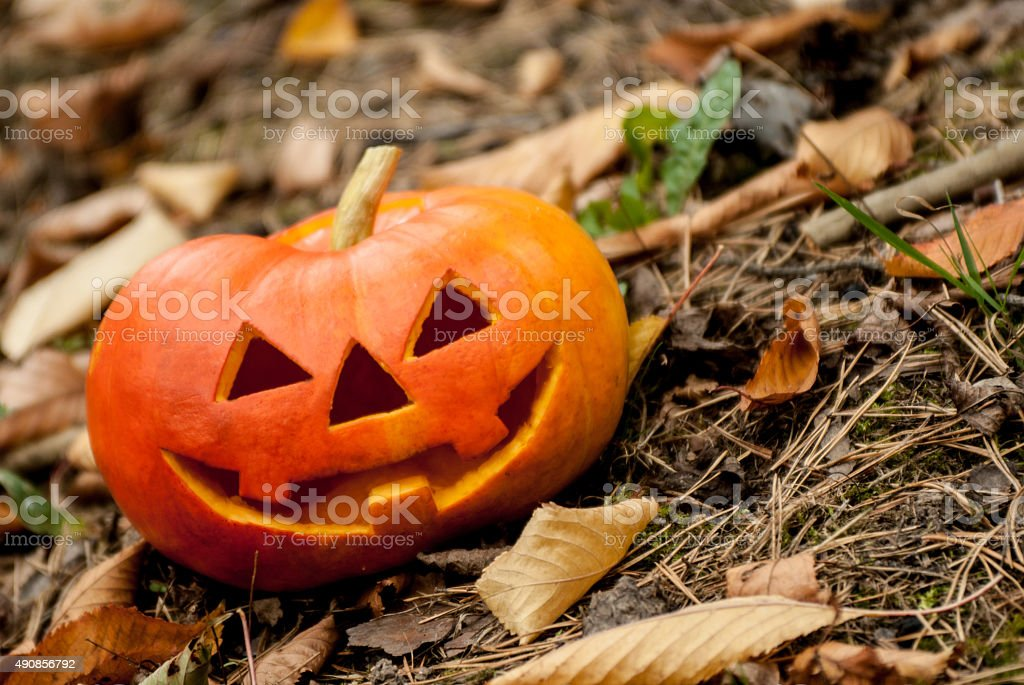 Halloween Jack-Head stock photo