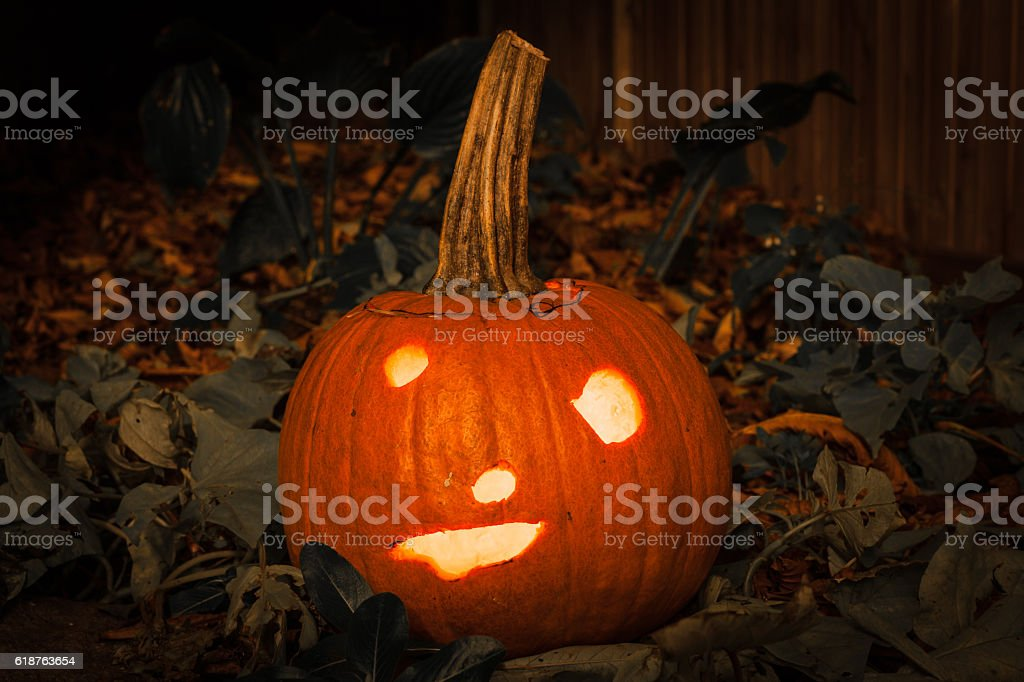 Halloween Jack-o-lantern stock photo