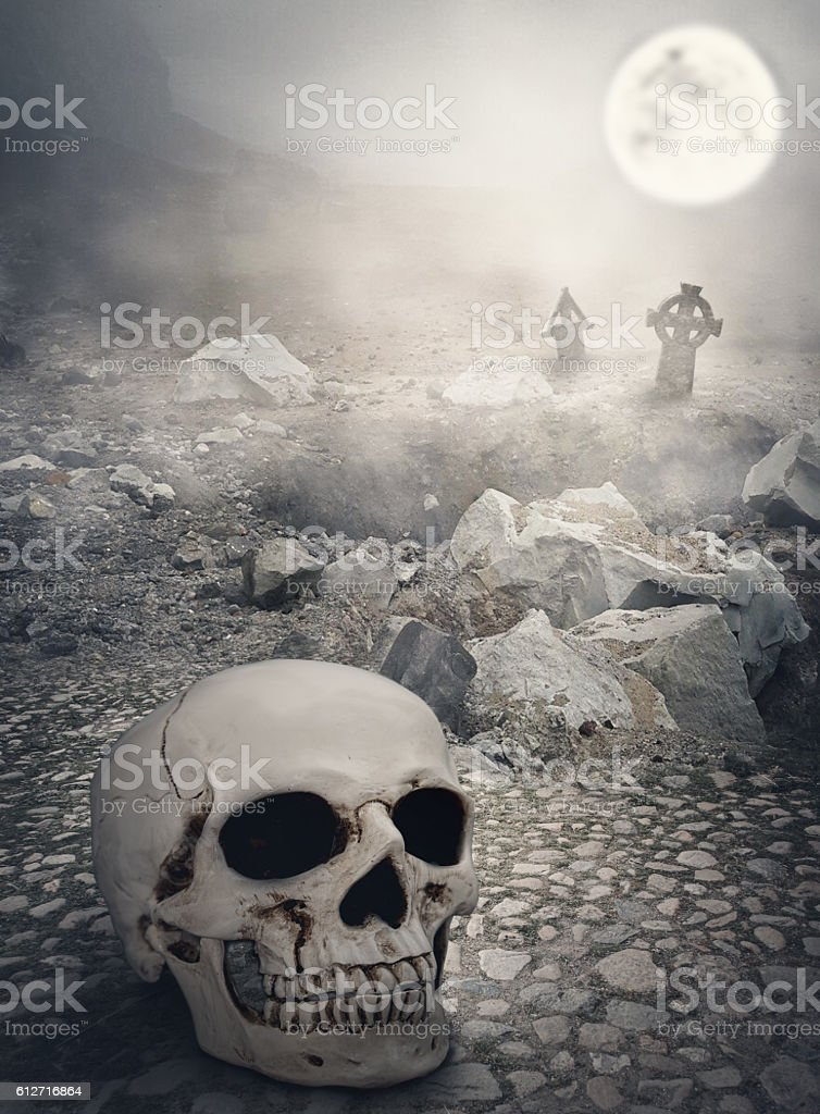 Halloween mystical landscape with skull stock photo