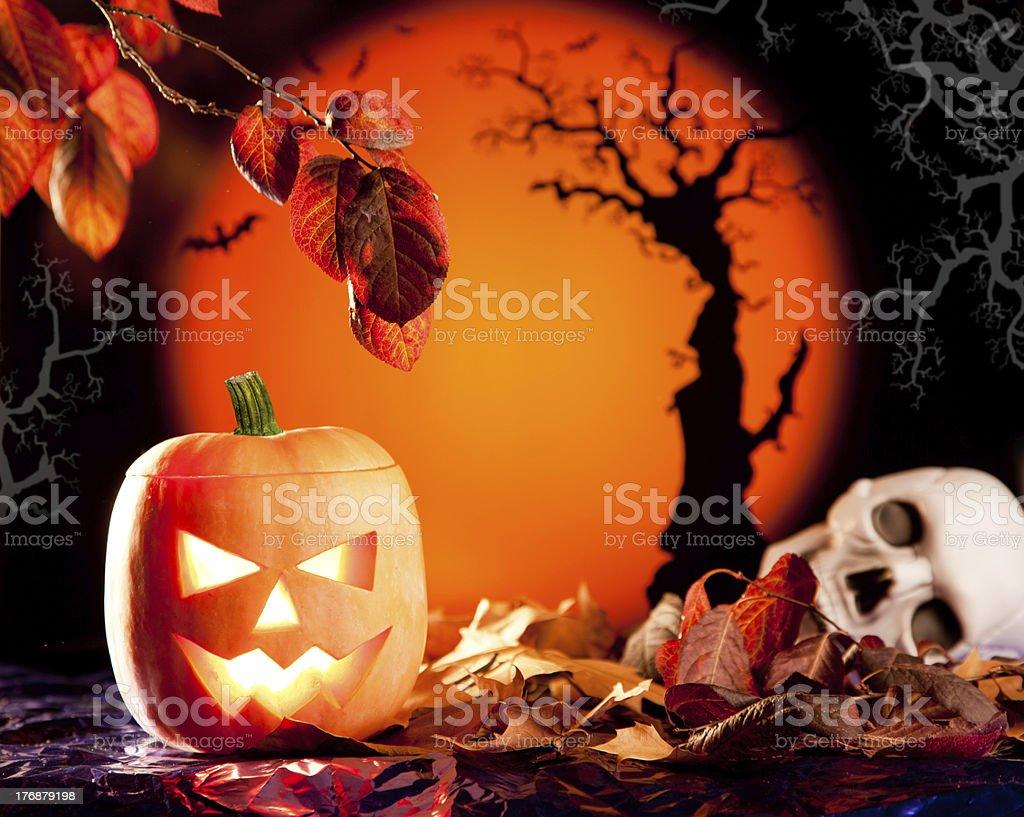 Halloween orange pumpkin on autumn leaves royalty-free stock photo