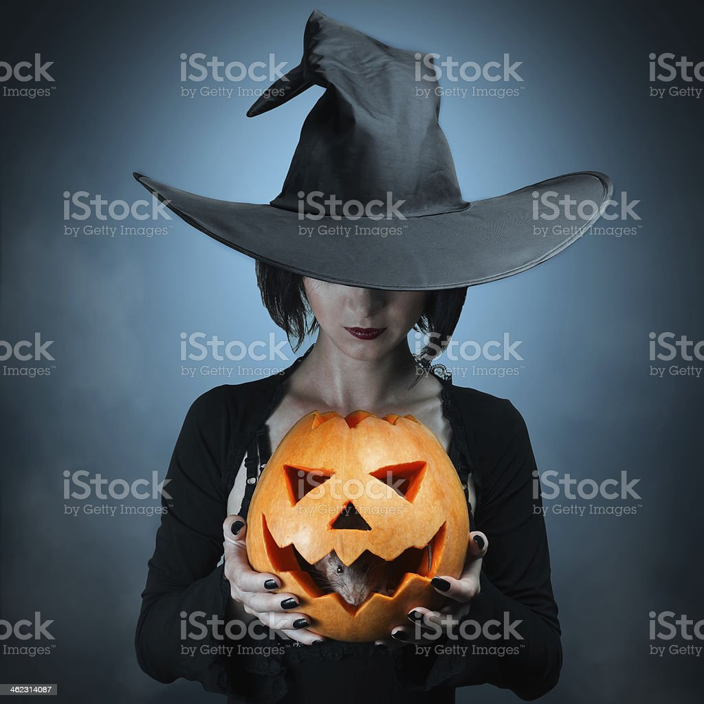Halloween pumpkin and gray mouse stock photo