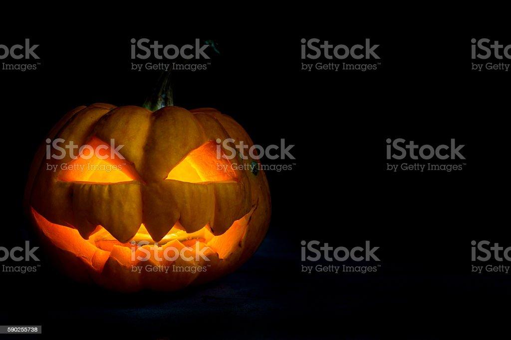 Halloween pumpkin head jack in darkness night stock photo