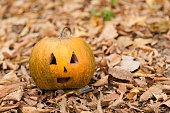 Halloween pumpkin lying on the leaves