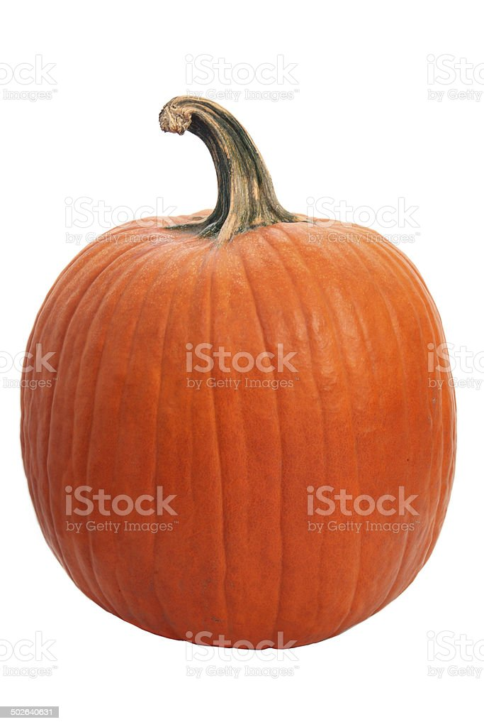 Halloween pumpkin on white - XXL stock photo