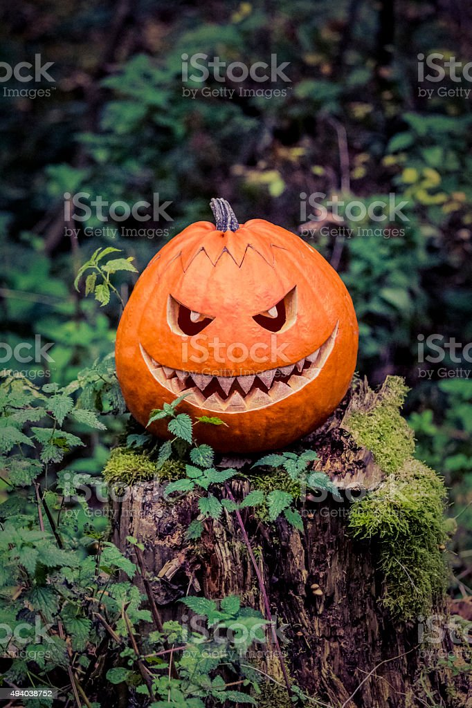 Halloween pumpkin with fiendish smile on scary trunk in forest stock photo