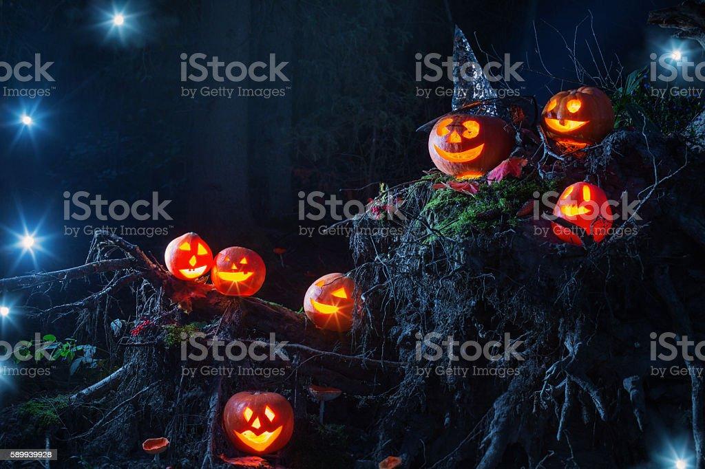 Halloween pumpkins in forest stock photo