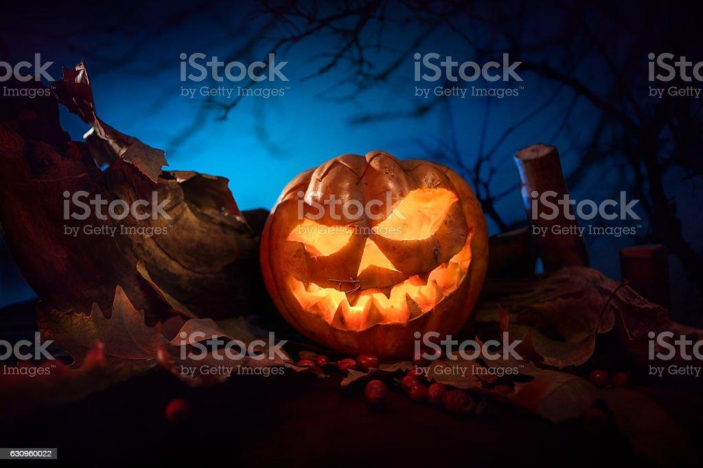 halloween scary pumpkin stock photo