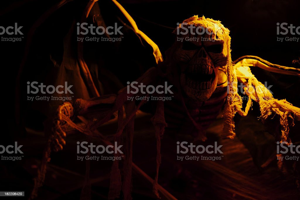 Halloween Skeleton royalty-free stock photo