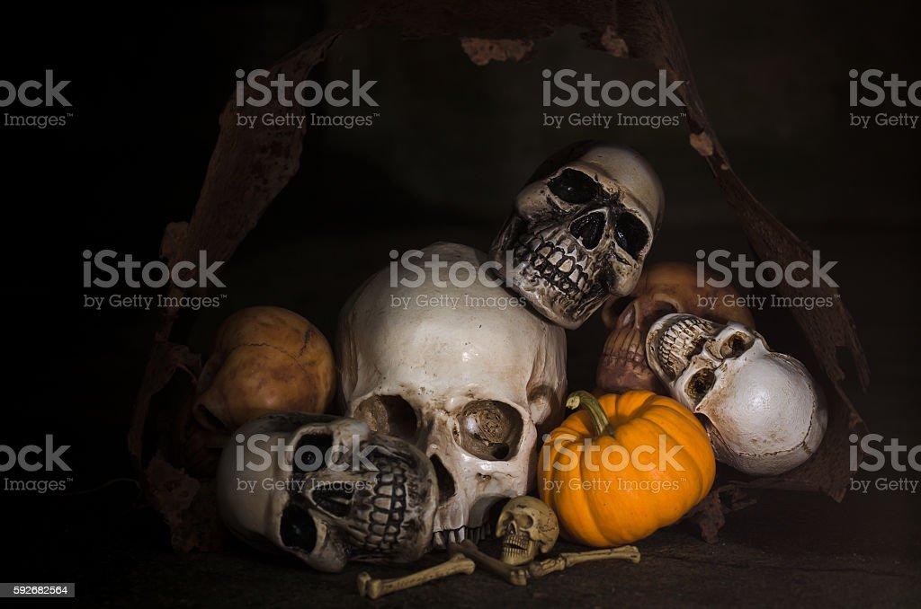 halloween skull on dark background stock photo
