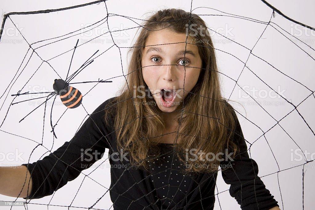 Halloween Spider Web 4 stock photo