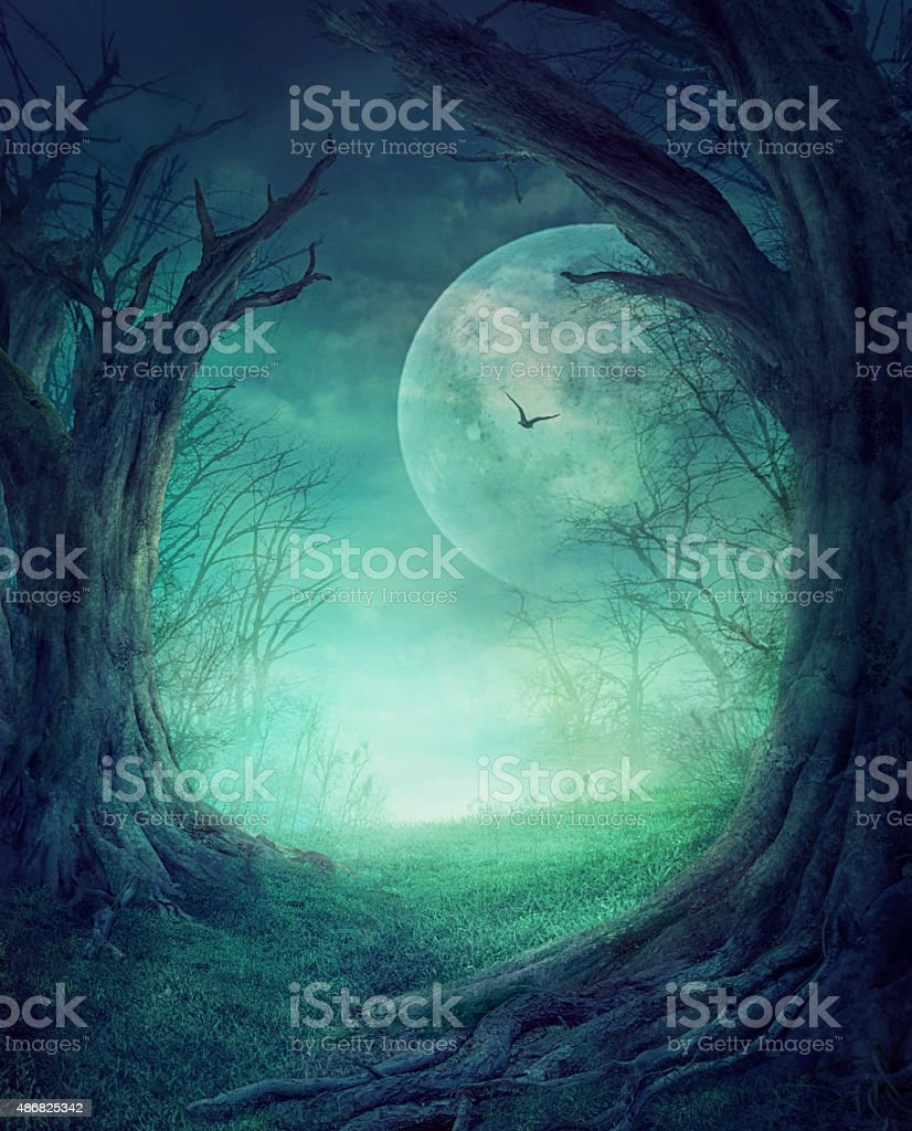 Halloween Spooky Forest vector art illustration