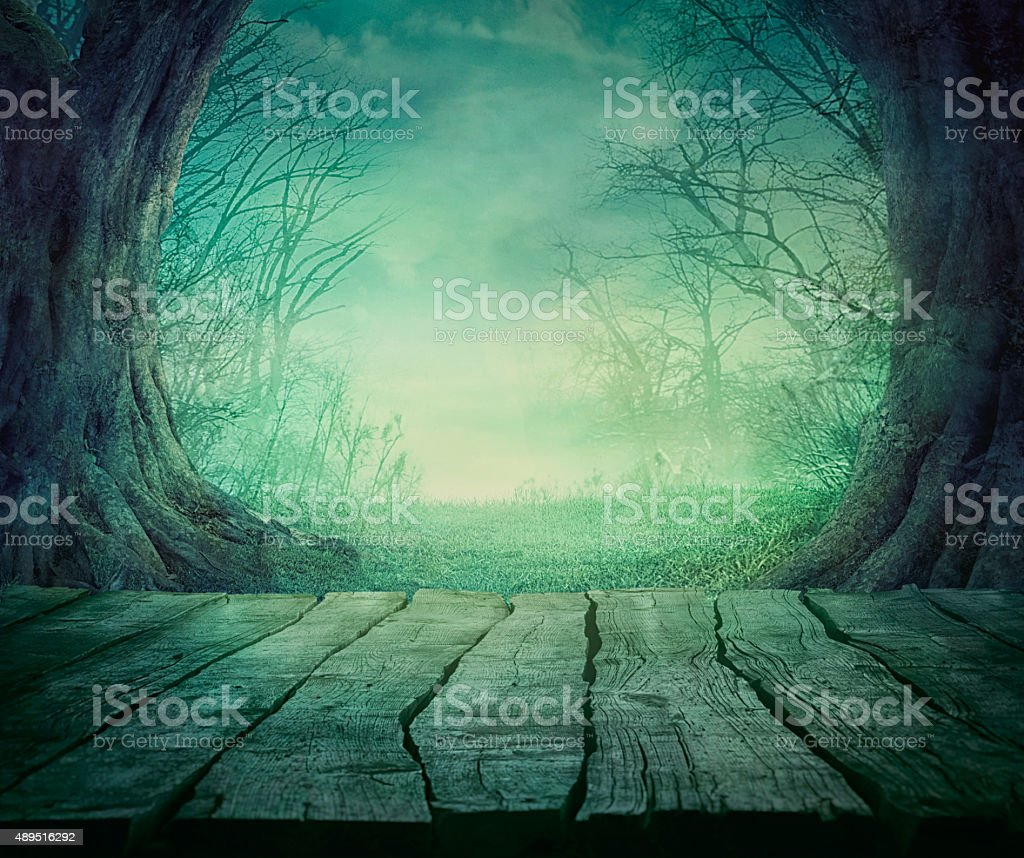 Halloween Spooky Forest stock photo