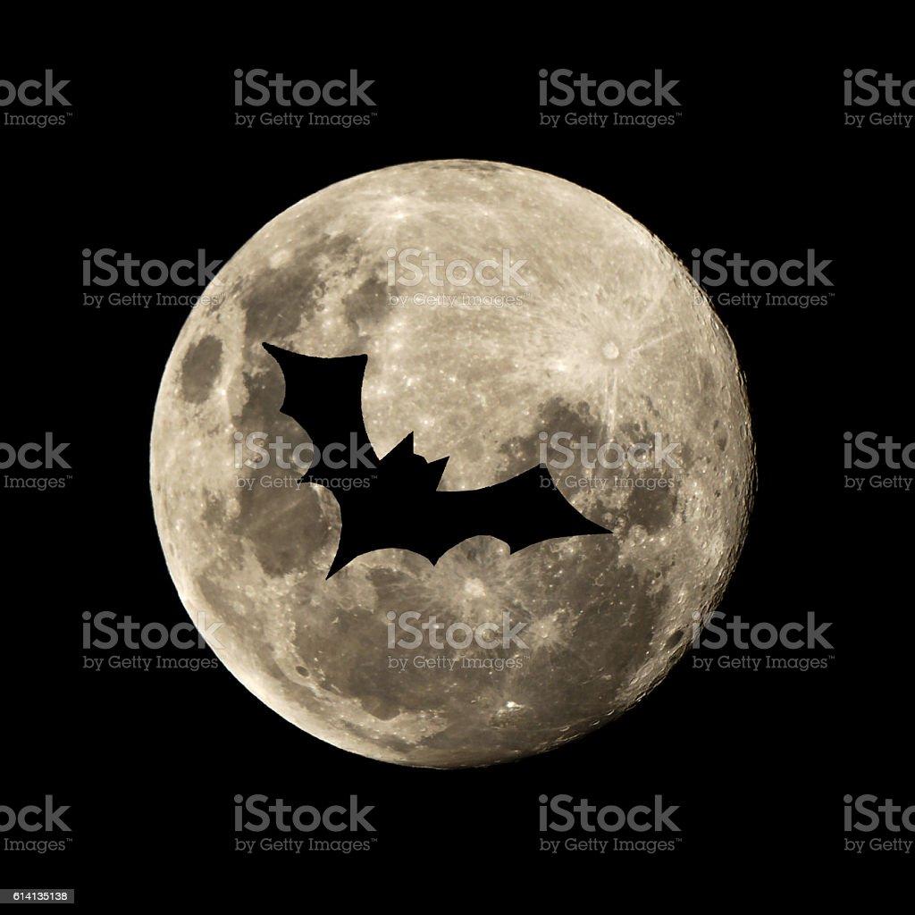 hallowen batt flies in the moon stock photo