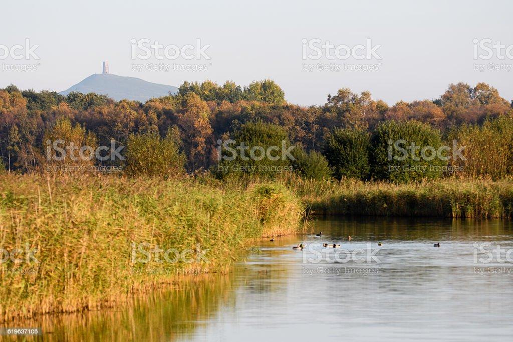 Ham Wall National Nature Reserve with Glastonbury Tor stock photo