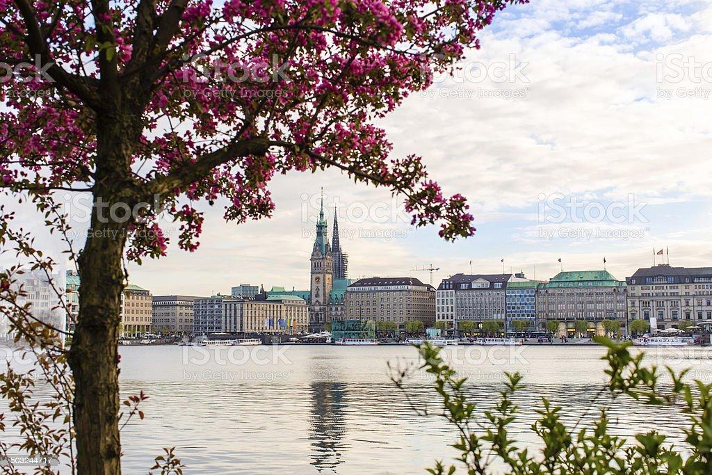 Hamburg Alster Lake - Town hall stock photo