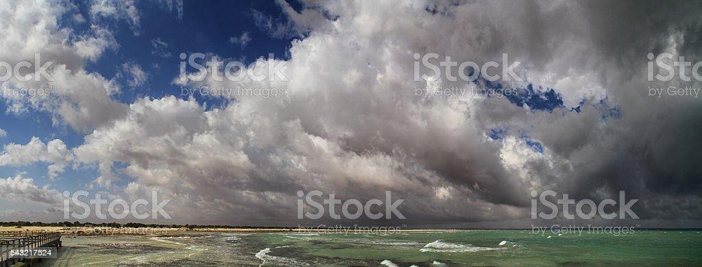 Hamelin Pool Stromatolites stock photo