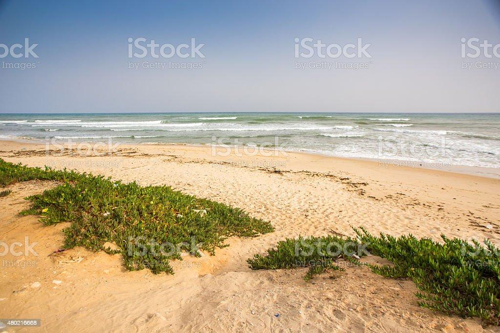 Hammamet in Tunisia stock photo
