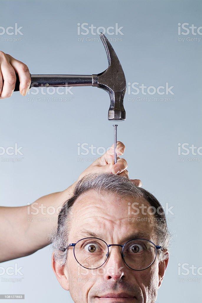 hammer head royalty-free stock photo