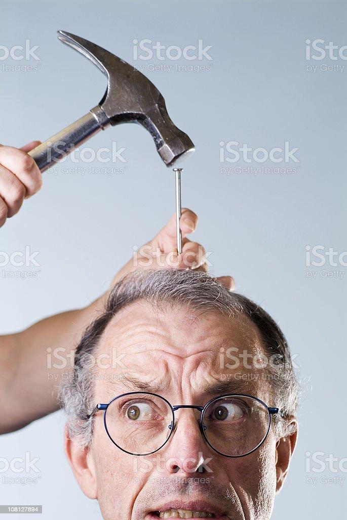 hammerhead royalty-free stock photo
