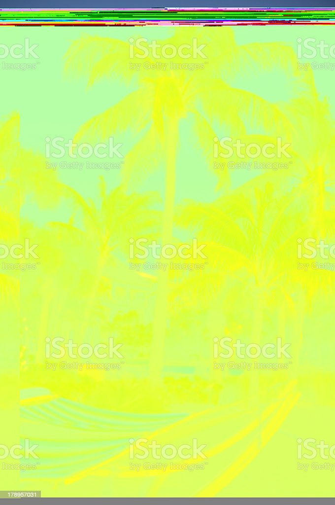 Hammock & Palm Trees royalty-free stock photo