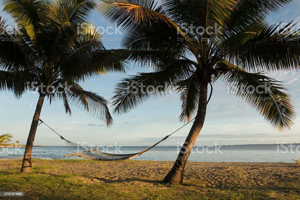 Hammock between palm trees, Fiji stock photo