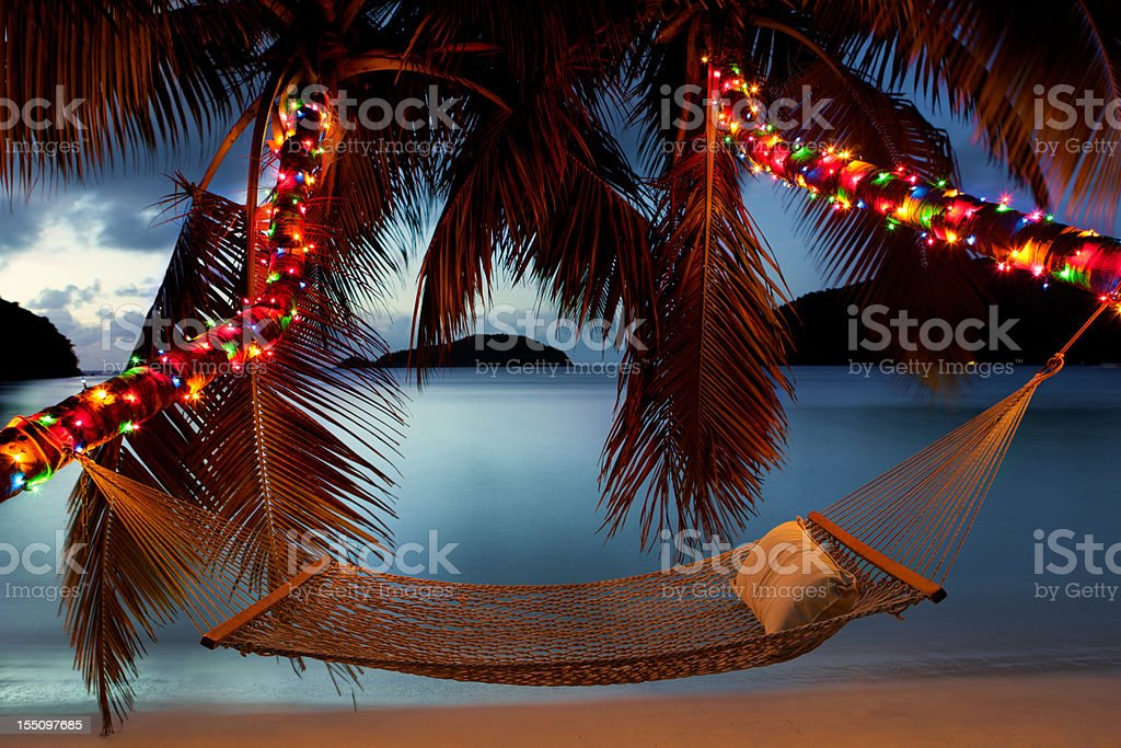 hammock between palm trees with Christmas lights at the beach stock photo