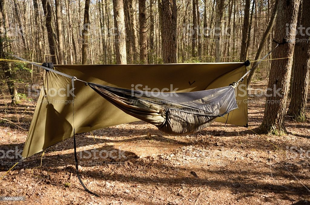 Hammock camping in wooded campsite stock photo