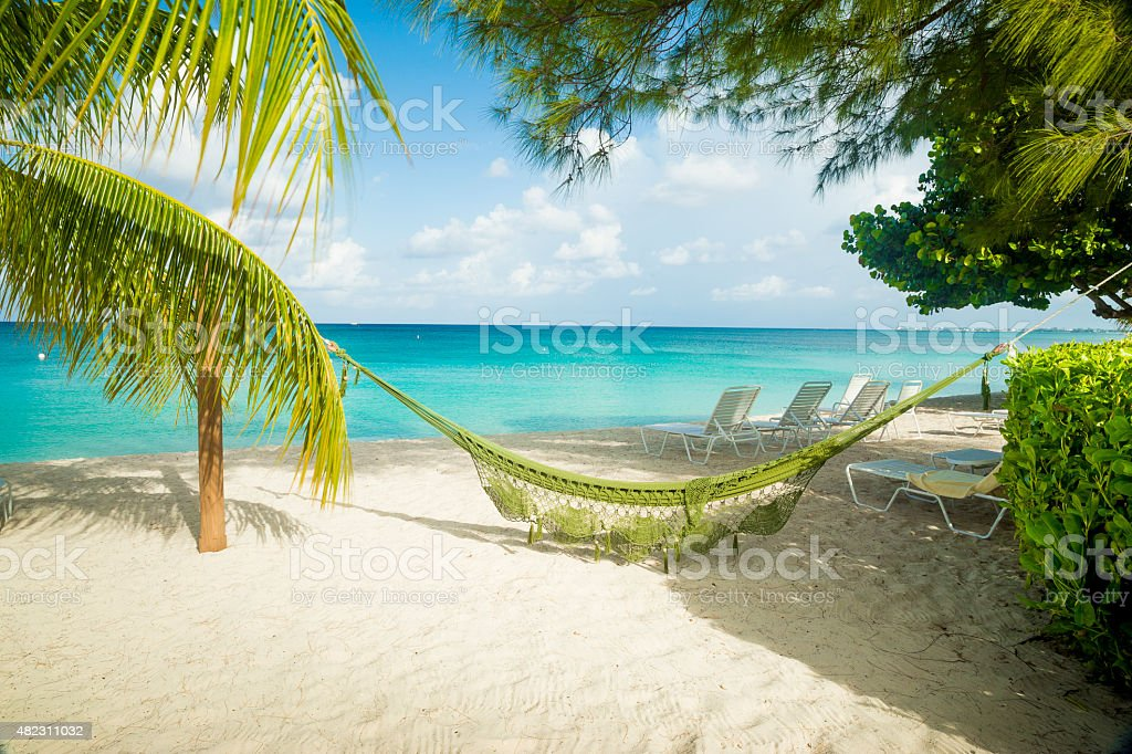 Hammock on a caribbean beach stock photo