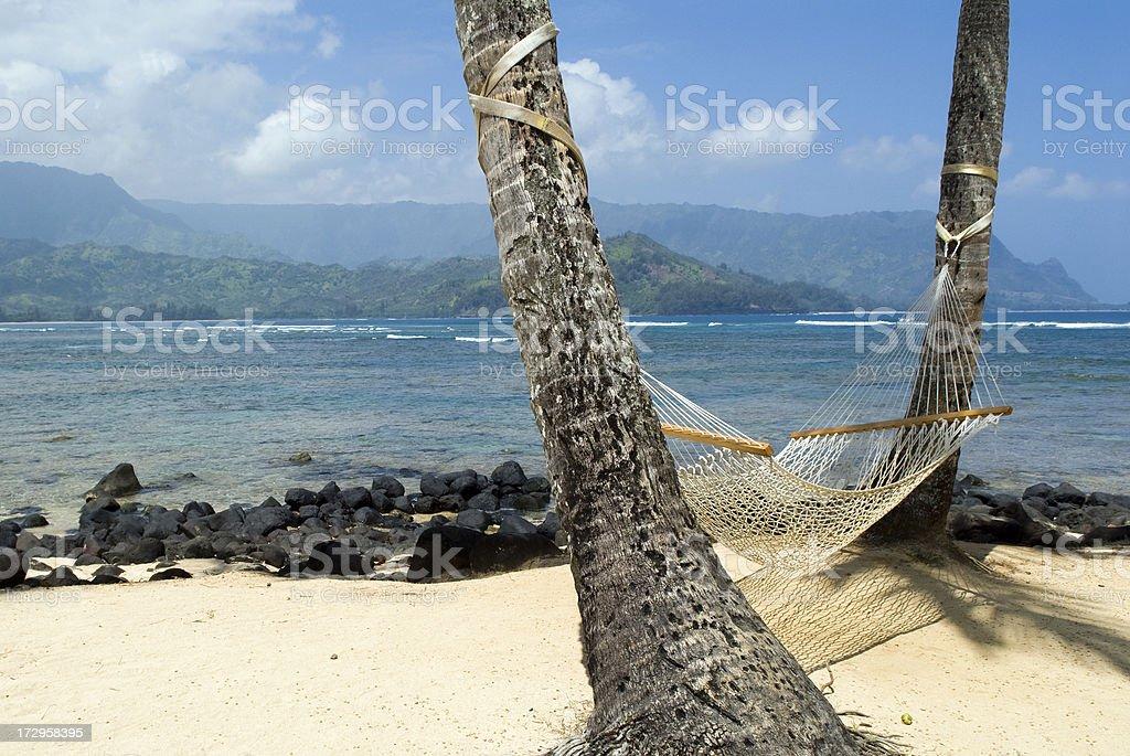 Hamak na plaży zbiór zdjęć royalty-free