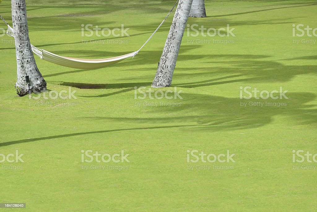 Hammock Set Among Palm Trees royalty-free stock photo